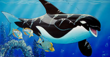 painting of baby orca by enviromental artist Apollo, this is not a wyland
